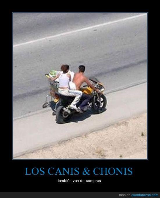 cani,carro,choni,moto