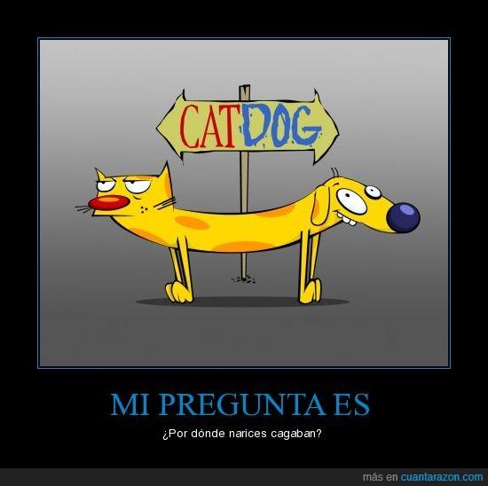 cagar,catdog,dibujos,gato,perro
