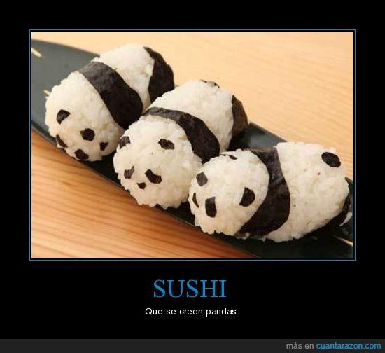 algas,arroz,figuras,pandas,sushi