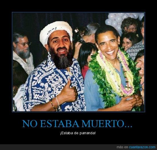 fiesta,obama,osama bin laden
