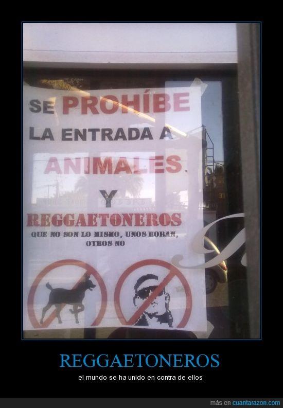 canis,prohibido,reggaeton