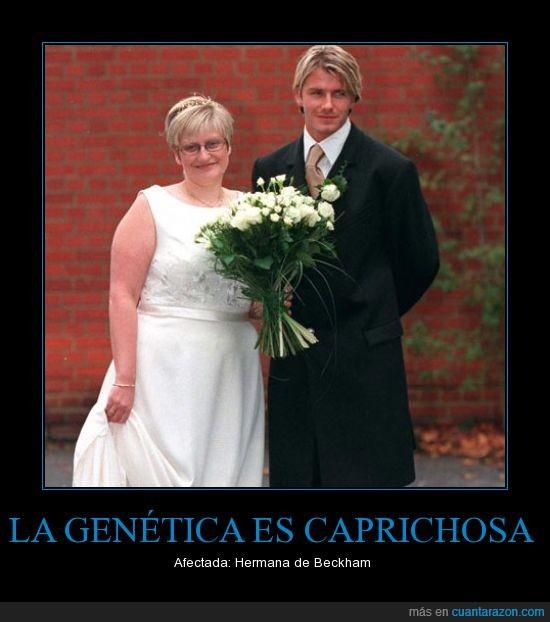 cruel,david beckham,genetica,hermana