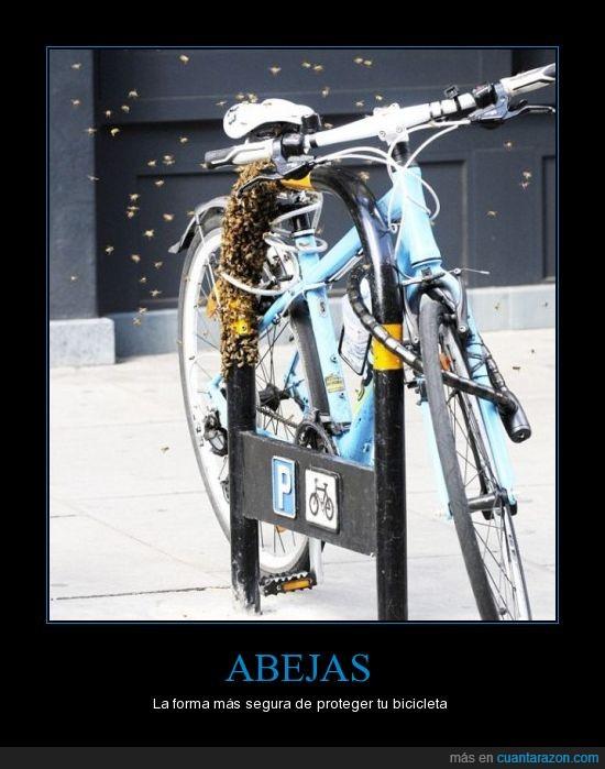 abejas,bici,parking bicis