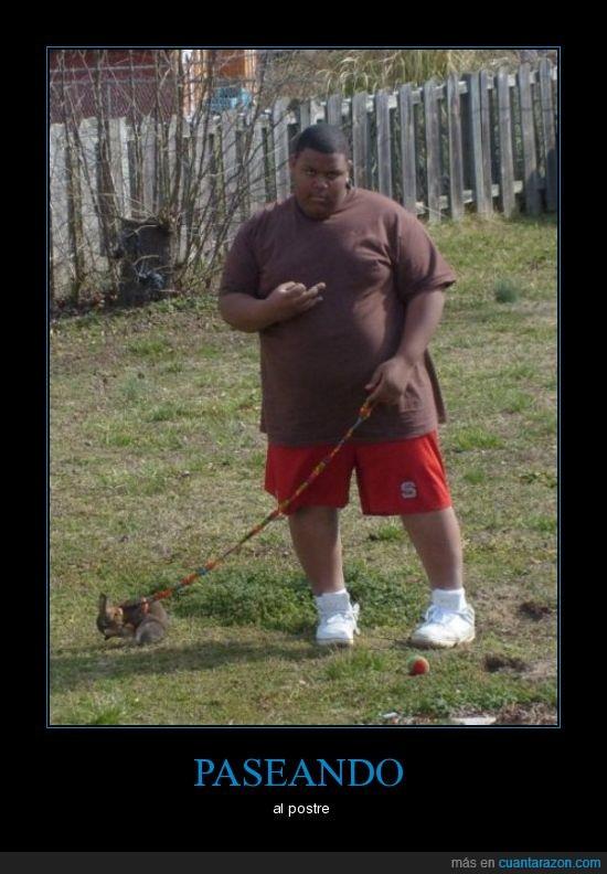 barriga,correa,gordo,postre
