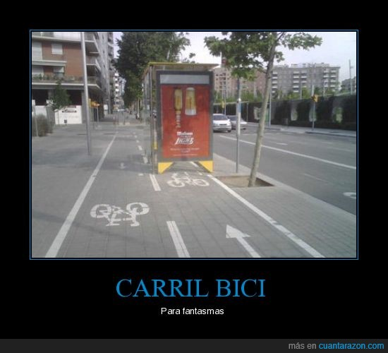 autobús,bici,carril,parada