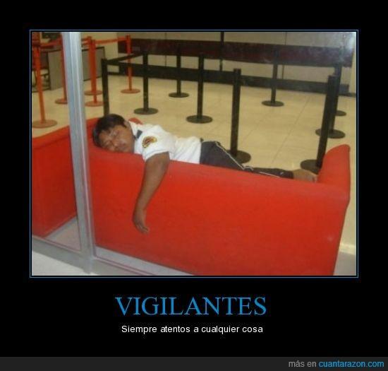 atentos,dormir,sofa,vigilantes