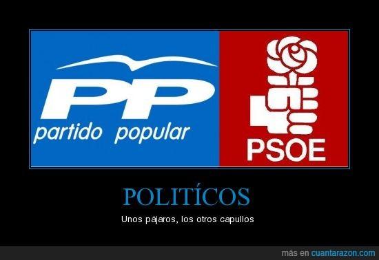 politicos,pp,psoe