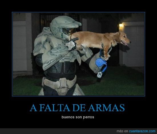 arma,armadura,halo,perro