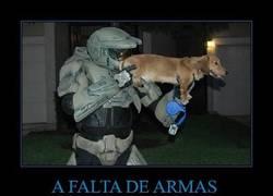 Enlace a A FALTA DE ARMAS