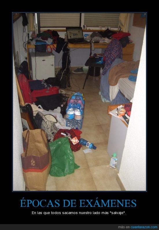 desastre,diógenes,habitación,pocilga,síndrome,tornado