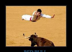 Enlace a RED BULL