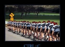 Enlace a CTRL+C