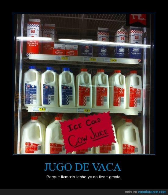 jugo,leche,vaca