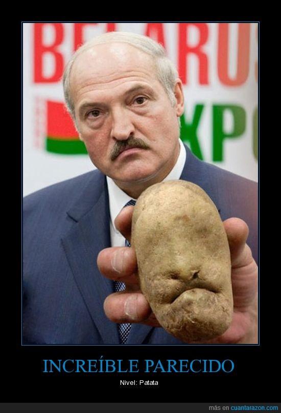 invreible,parecido,patata