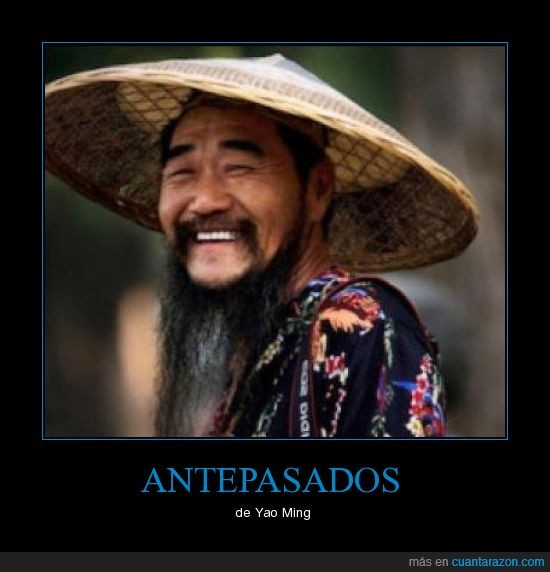 antepasado,meme,yao ming