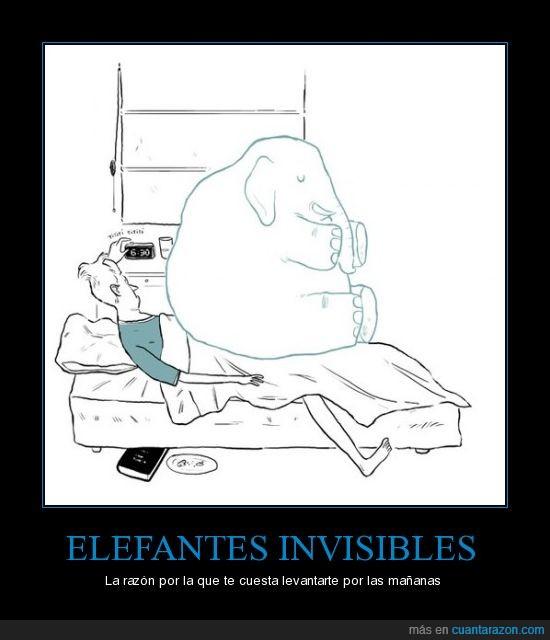 cama,despertar,dormir,elefante,invisible
