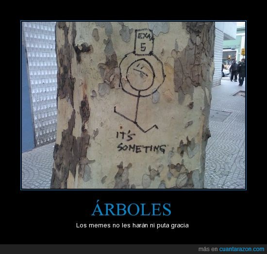 5,arbol,examen,it's something