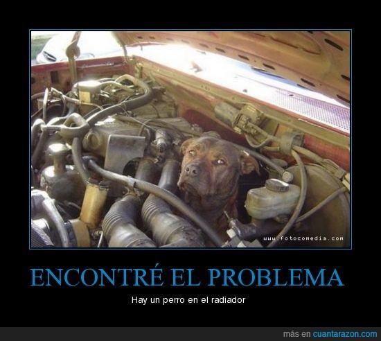 auto,pero,problema,radiador