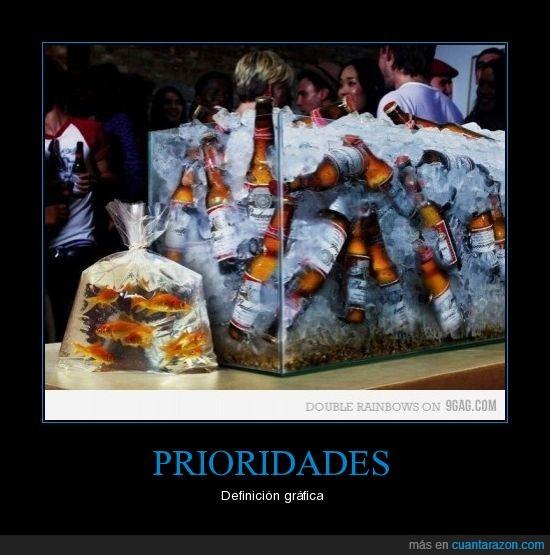 birras,cerveza,fiesta,peces,prioridades