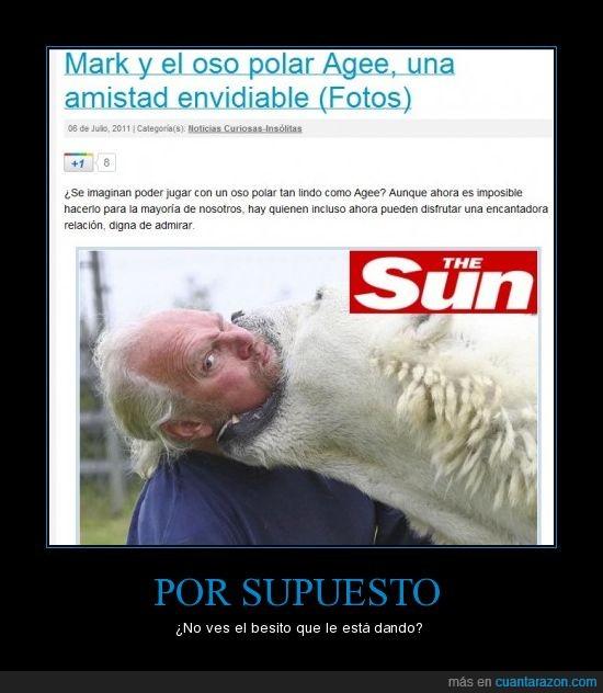 muerde amigo,oso polar