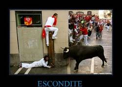 Enlace a ESCONDITE