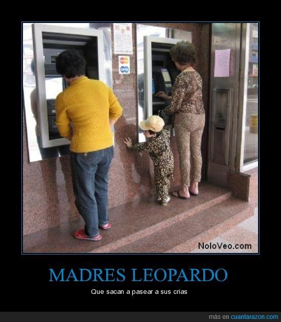 animal,banco,crias,leopardo,madre,niño,señora