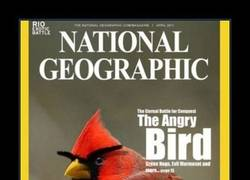 Enlace a NATIONAL GEOGRAPHIC