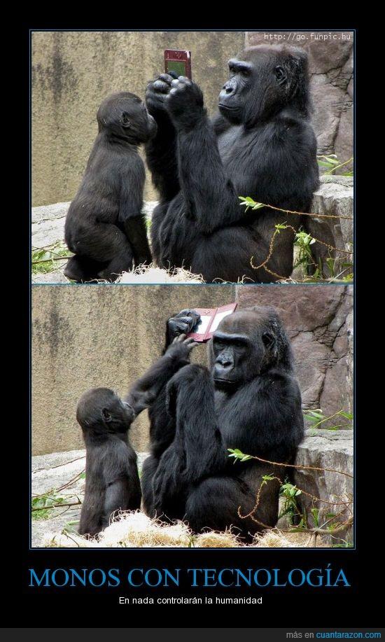 friki,monos