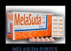 Enlace a MELASUDA FORTEX