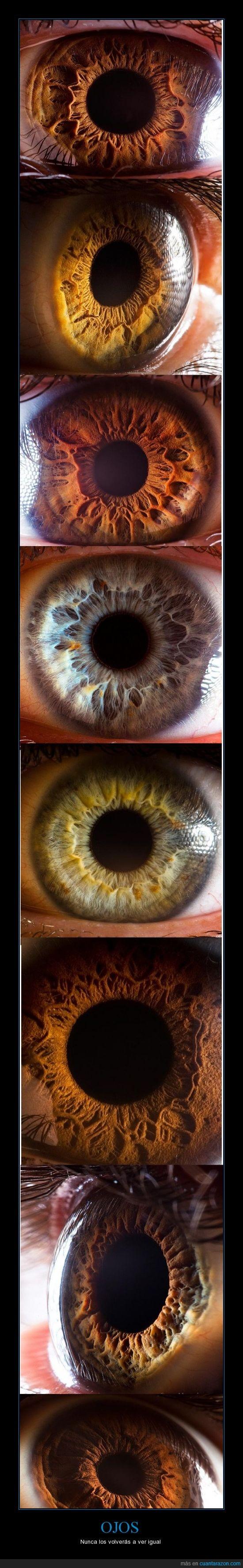 camara,especial,igual,macro,ojos