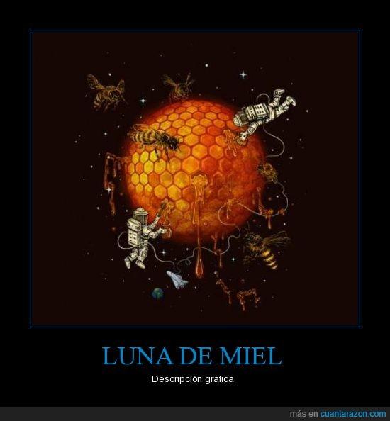 luna,miel