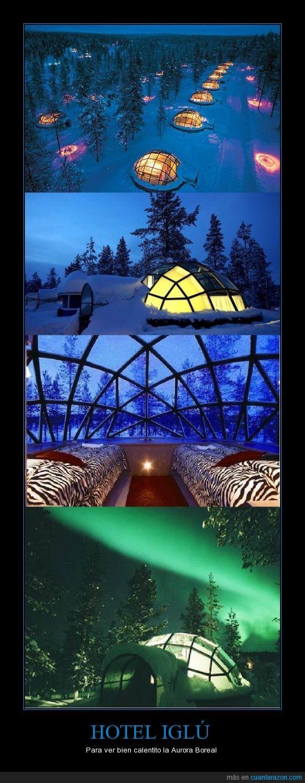 aurora boreal,hotel,igloo
