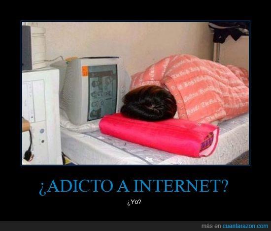 adicto,cama,internet,pc