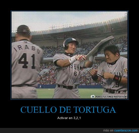 baseball,chino,estadio,golpe,tortuga