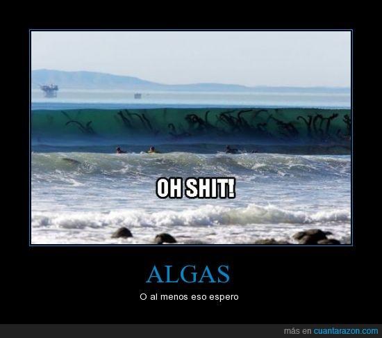algas,extraterrestres,mar,olas