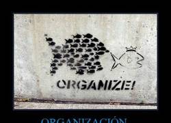 Enlace a ORGANIZACIÓN