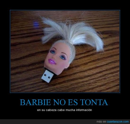 barbie,cabeza,información,pendrive