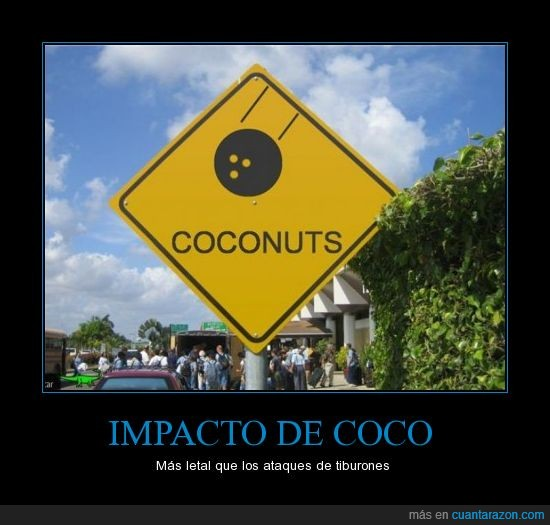 coco,coconuts,cocos,sabias que,tiburones