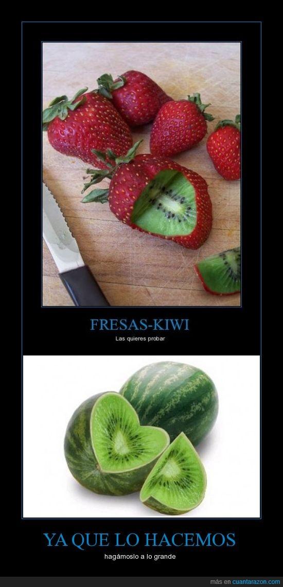 comida,fresas,fruta,grande,kiwi,melon,sandia,transgénico