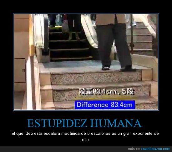 escalera mecanica estupidez humana