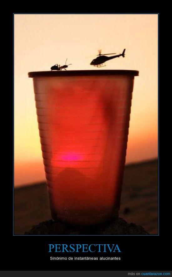 helicóptero,hormiga,perspectiva