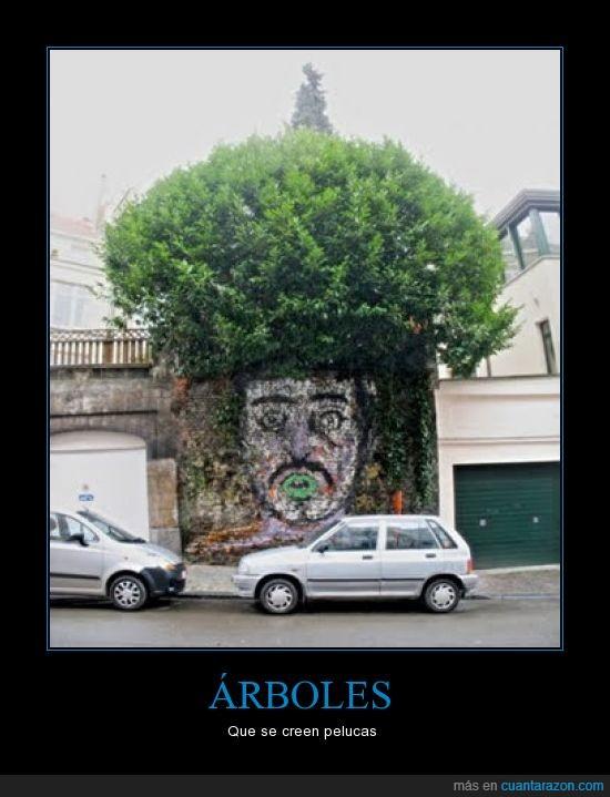 arboles,graffiti,pelucas