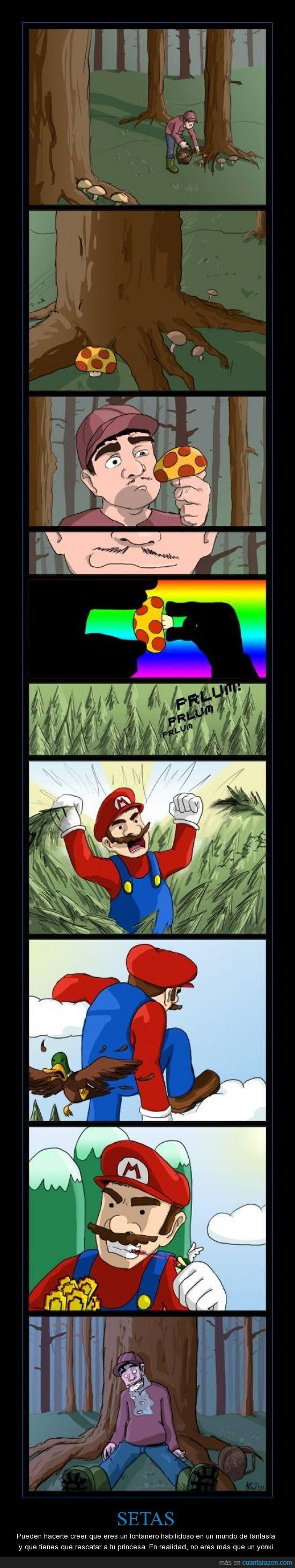 fontanero,Mario,no,setas