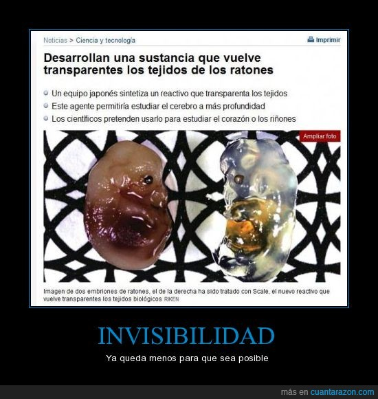 invisibilidad,noticia,ratones,superpoderes