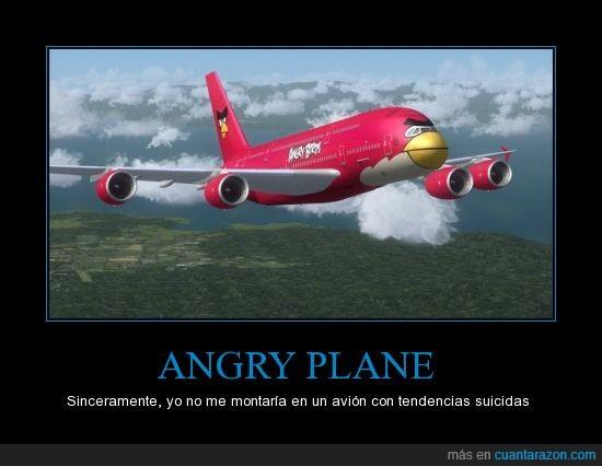 angry bird,avión