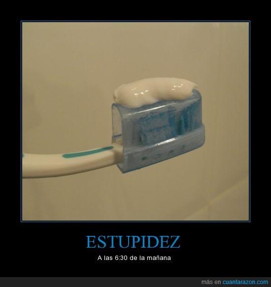 cepillo,dormir,estupidez,pasta de dientes