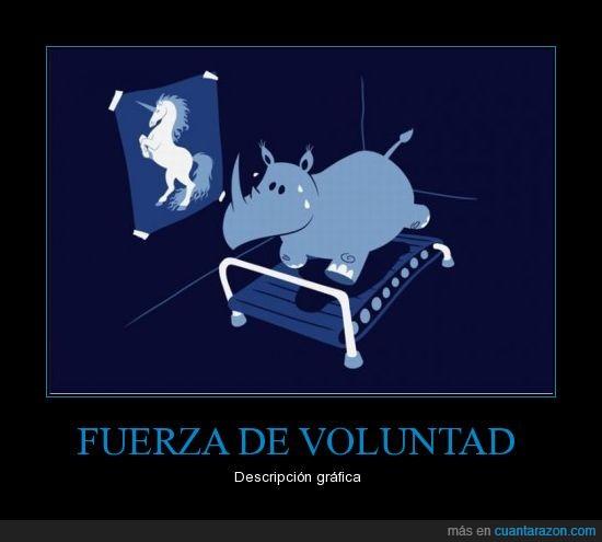 fuerza voluntad,rinoceronte,unicornio