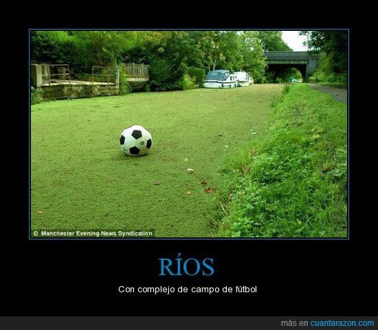 césped,fútbol,río