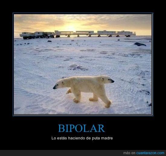 bipolar,lo estas haciendo,oso,polar,tren al fondo xD