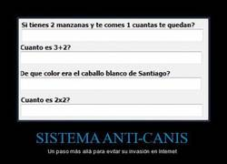Enlace a SISTEMA ANTI-CANIS